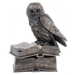 Papuošalų dėžutė. Pelėda ant knygų