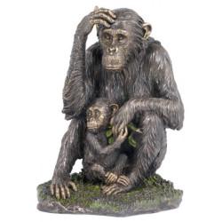 Šimpanzė su mažyliu
