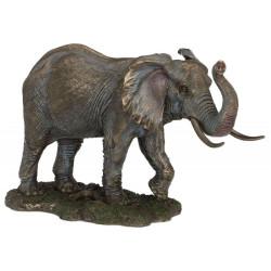 Dramblys. Veronese kolekcija