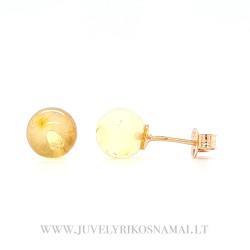 Auksiniai auskarai su skaidriu gintaru